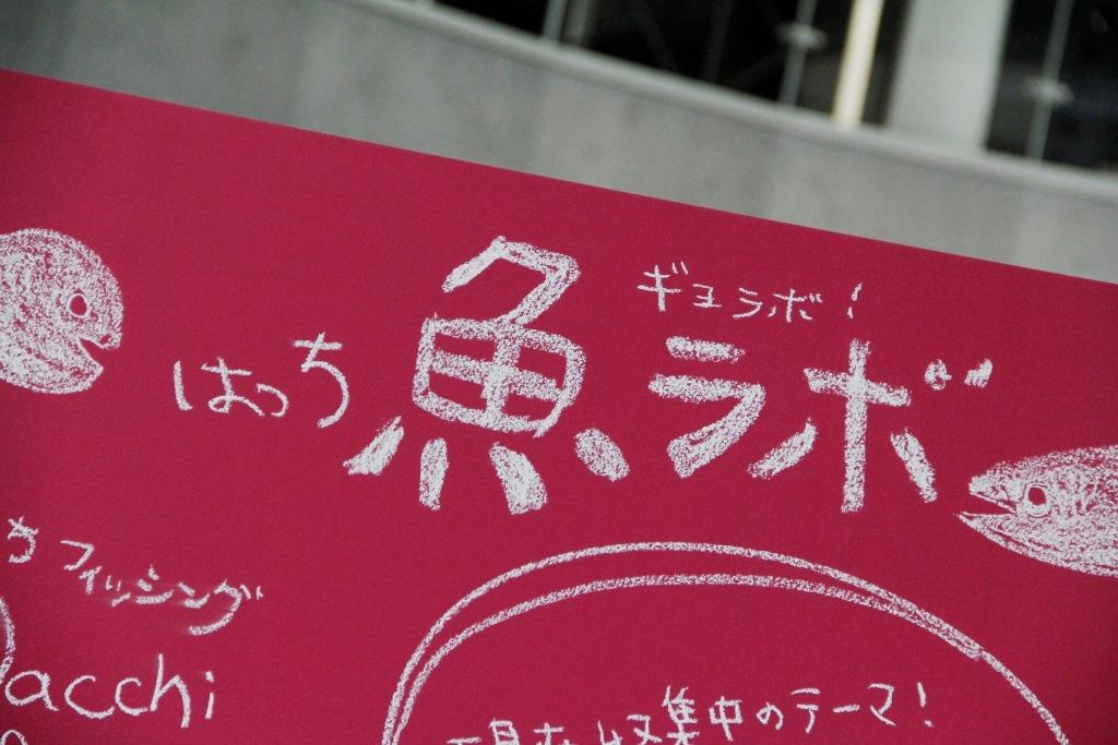 http://hacchi.jp/blog/upload/images/20140514-1.JPG