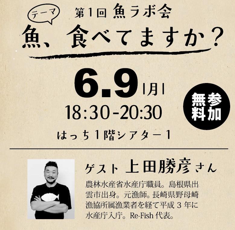 http://hacchi.jp/blog/upload/images/20140517-1.jpg