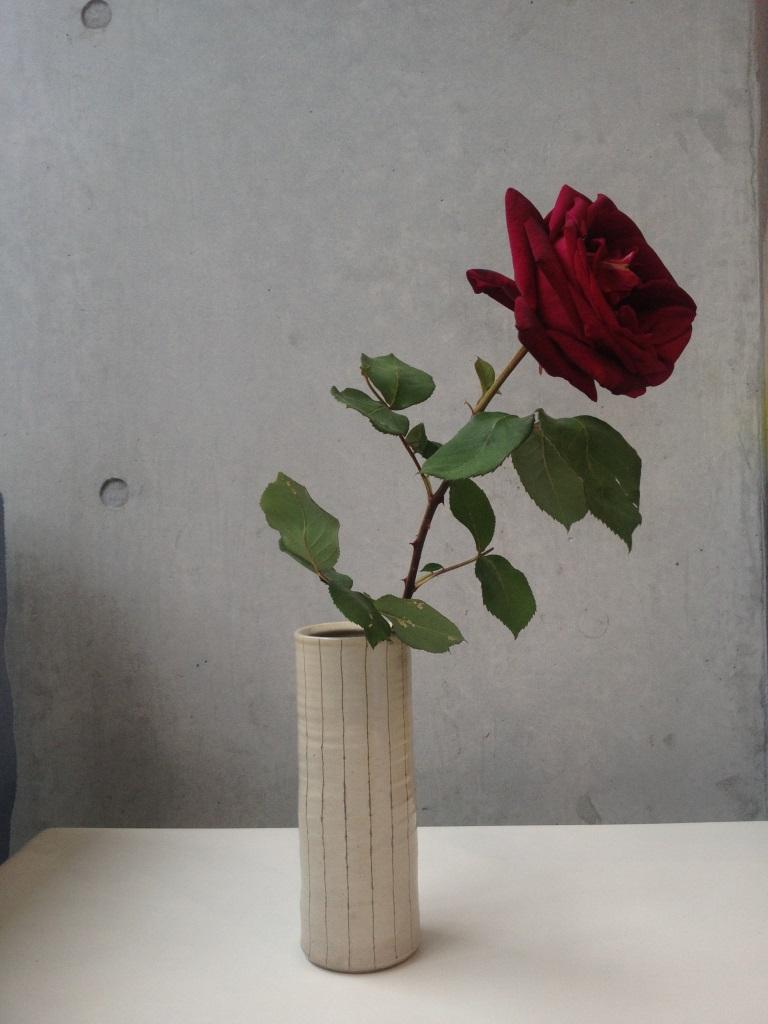 http://hacchi.jp/blog/upload/images/IMG_3847.JPG