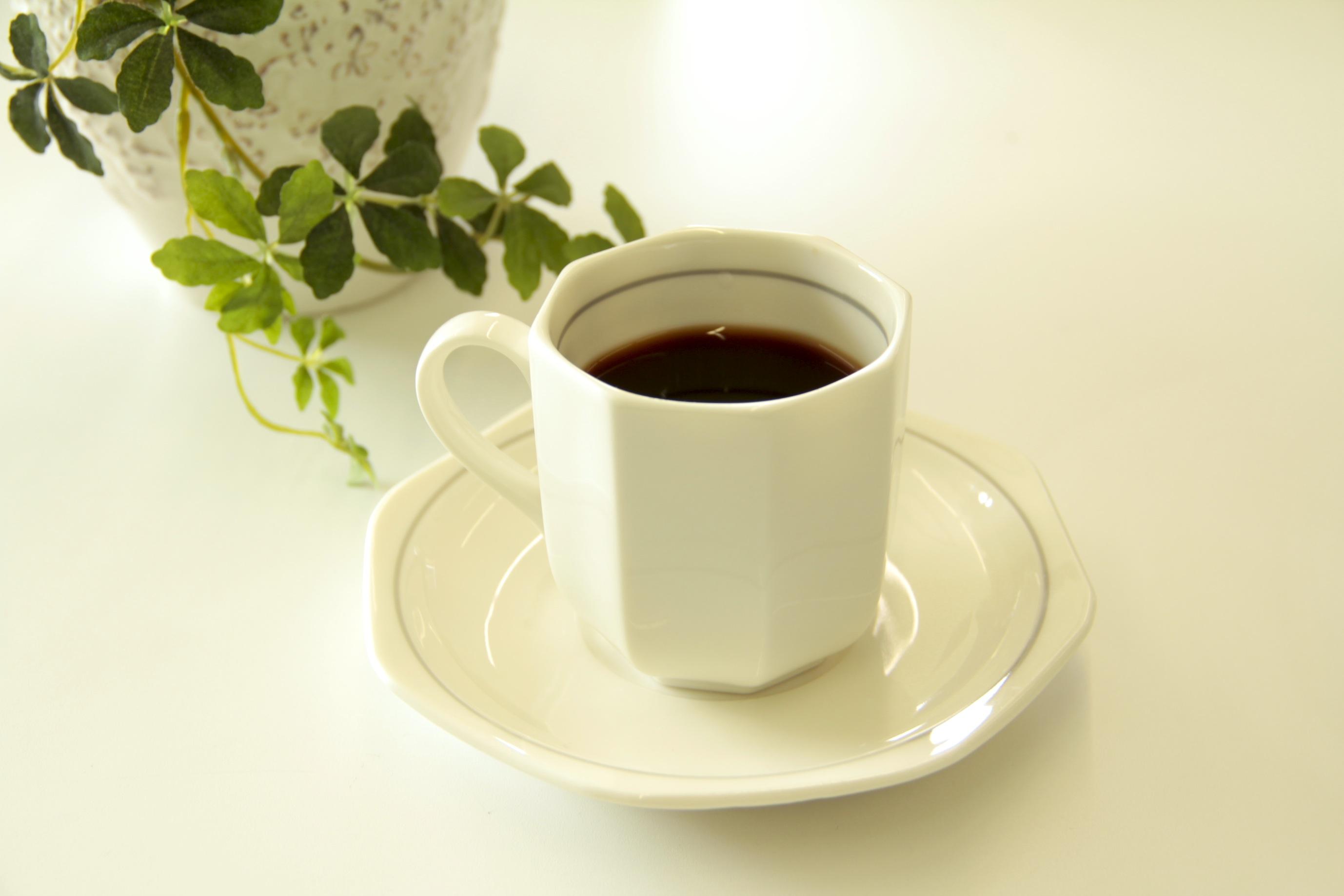 http://hacchi.jp/blog/upload/images/_MG_4724.JPG